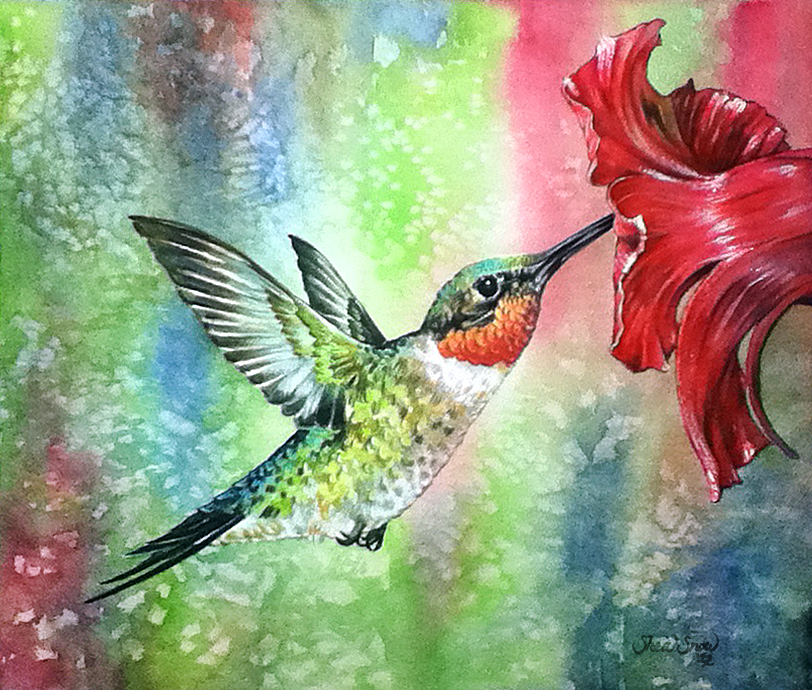 Watercolor Painting of a Male Ruby Throated Hummingbird.